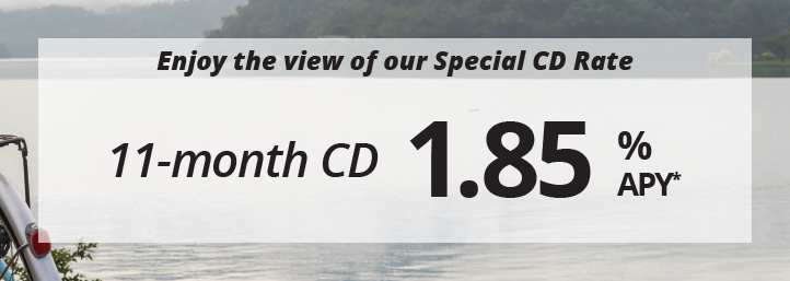 Sit back, relax and continue to enjoy.Take in the view of our cd special CD rate 11-month CD, 1.85% APY*