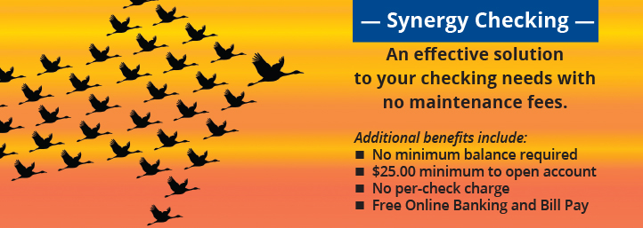 Synergy Checking — An effective solution to your checking needs with no maintenance fees.